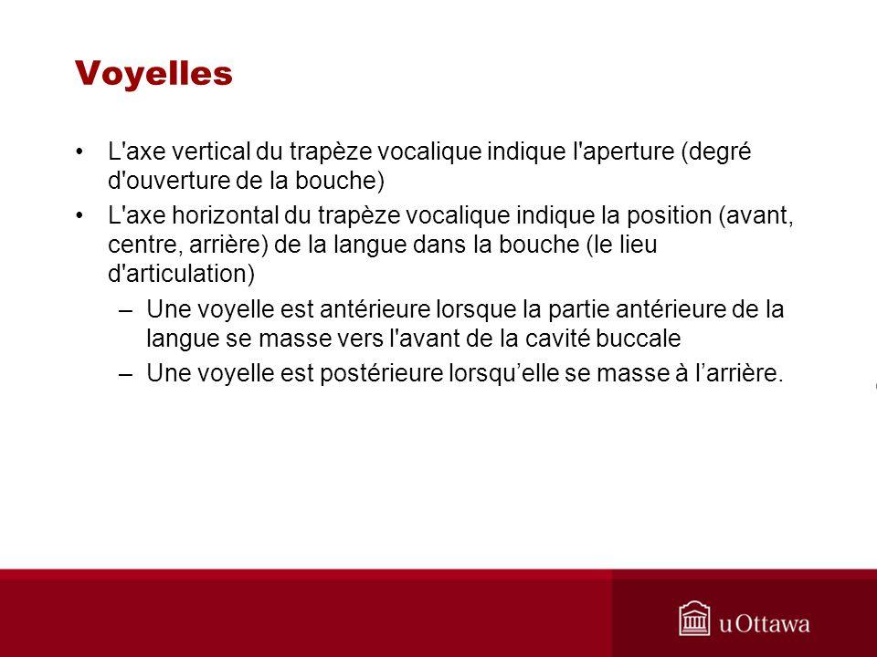 Voyelles L'axe vertical du trapèze vocalique indique l'aperture (degré d'ouverture de la bouche) L'axe horizontal du trapèze vocalique indique la posi