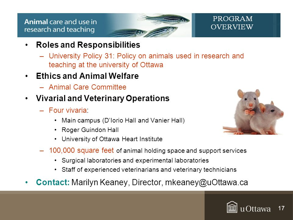 Roles and Responsibilities –University Policy 31: Policy on animals used in research and teaching at the university of Ottawa Ethics and Animal Welfar