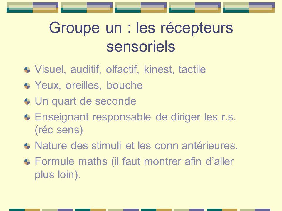 Groupe un : les récepteurs sensoriels Visuel, auditif, olfactif, kinest, tactile Yeux, oreilles, bouche Un quart de seconde Enseignant responsable de
