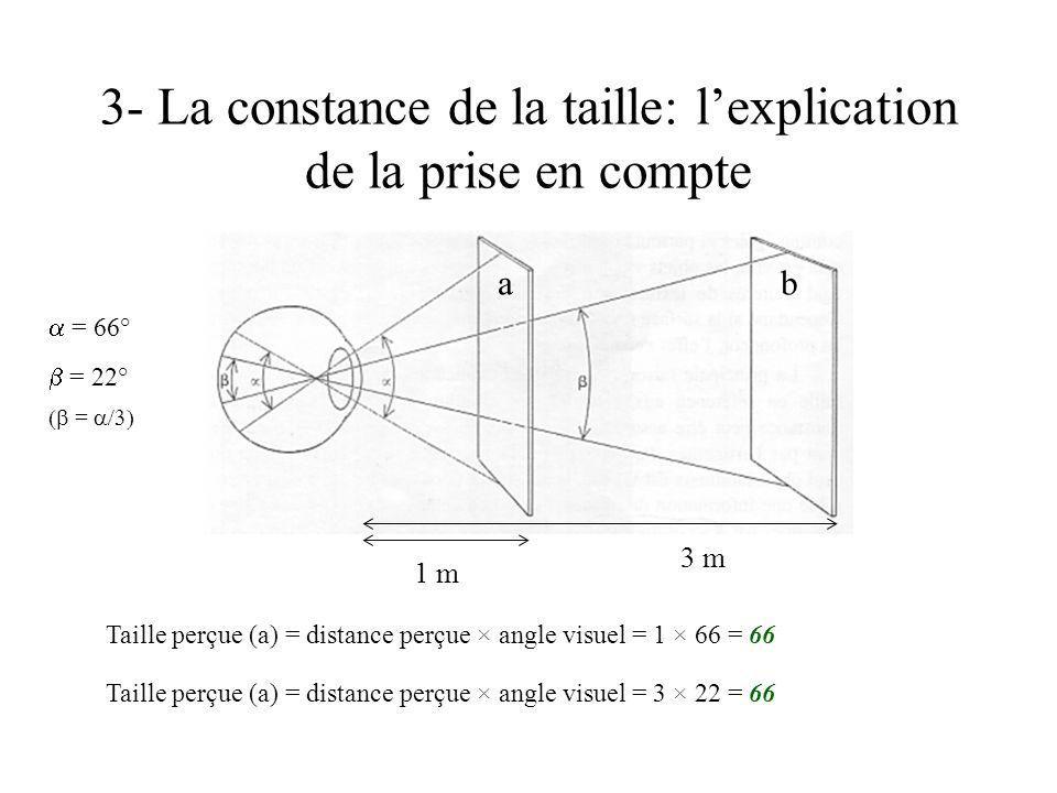 3- La constance de la taille: lexplication de la prise en compte 3 m = 1 m = 66° Taille perçue (a) = distance perçue × angle visuel = 3 × 22 = 66 ba T