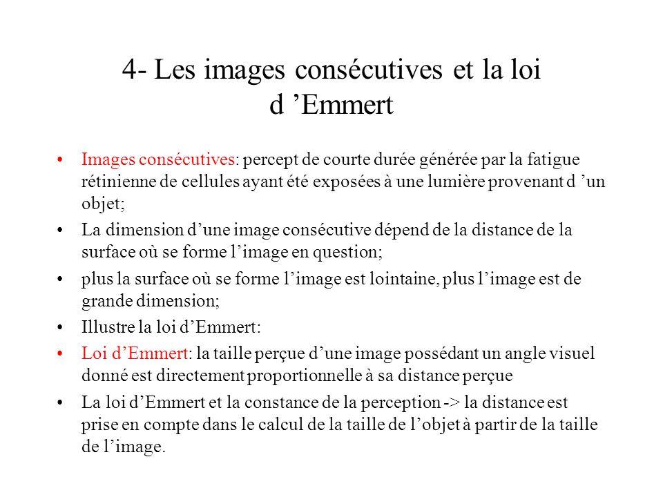 4- Les images consécutives et la loi d Emmert Images consécutives: percept de courte durée générée par la fatigue rétinienne de cellules ayant été exp