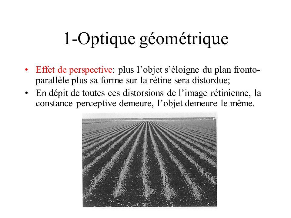 1-Optique géométrique Effet de perspective: plus lobjet séloigne du plan fronto- parallèle plus sa forme sur la rétine sera distordue; En dépit de tou