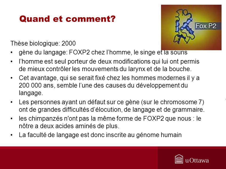 Thèse biologique: 2000 gène du langage: FOXP2 chez lhomme, le singe et la souris lhomme est seul porteur de deux modifications qui lui ont permis de mieux contrôler les mouvements du larynx et de la bouche.