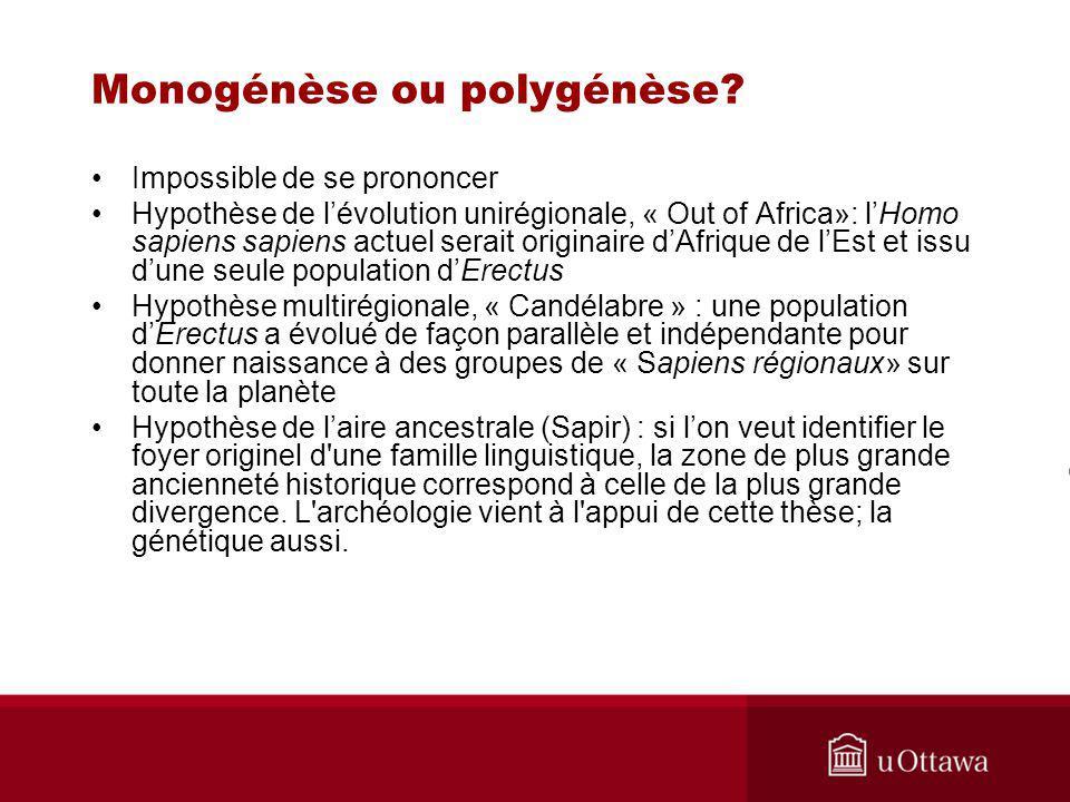 Monogénèse ou polygénèse.