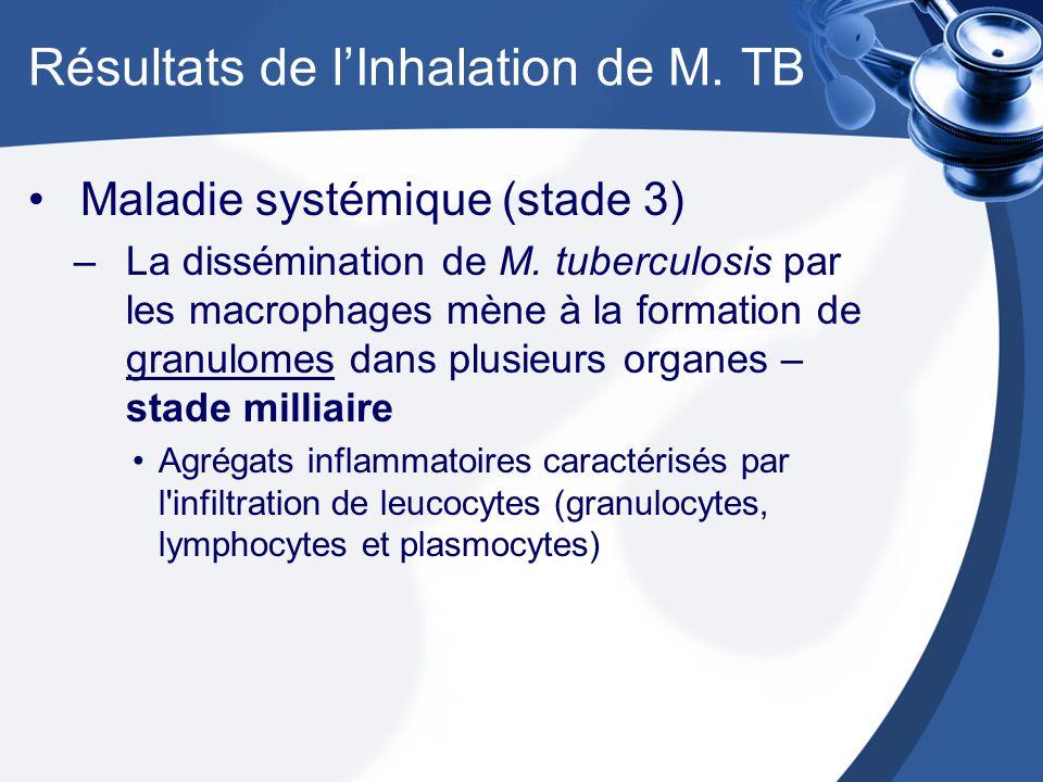 Résultats de lInhalation de M.TB Maladie systémique (stade 3) –La dissémination de M.