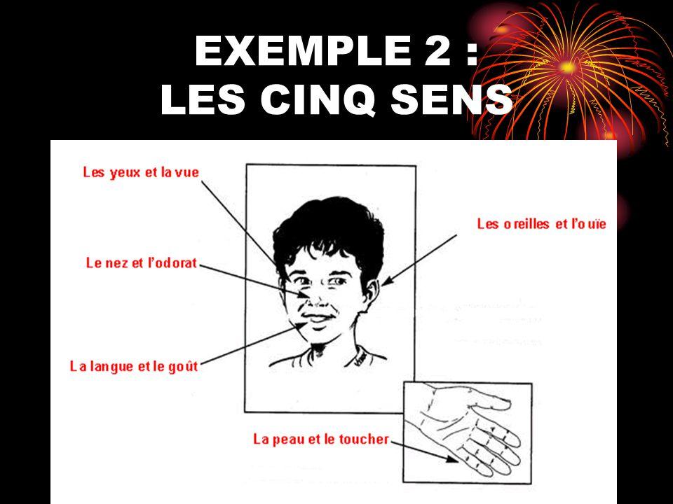 EXEMPLE 2 : LES CINQ SENS