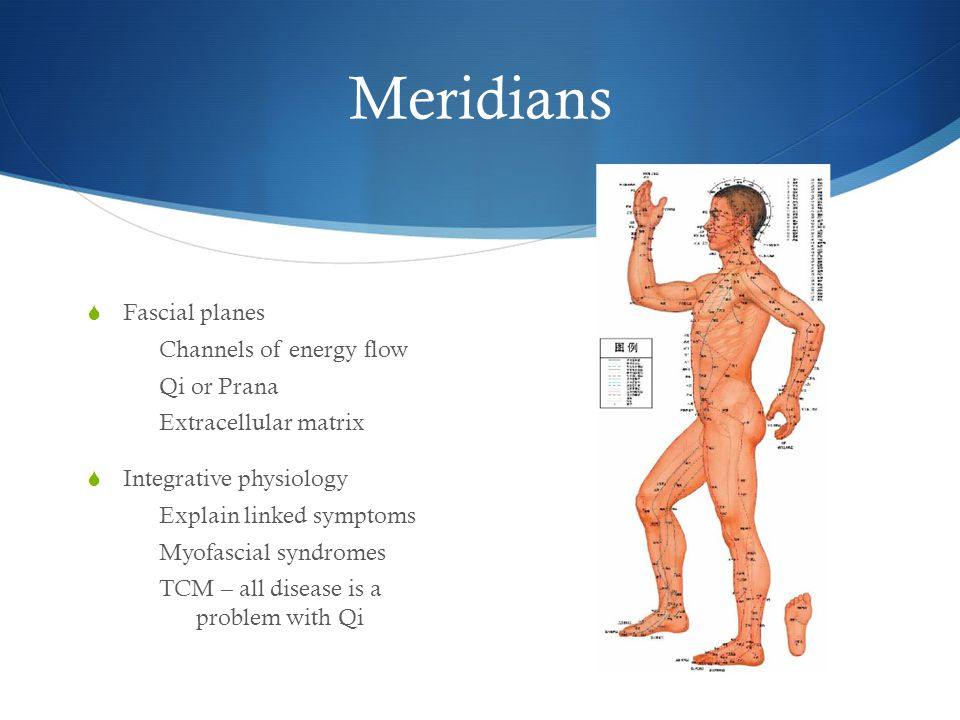 Meridians Fascial planes Channels of energy flow Qi or Prana Extracellular matrix Integrative physiology Explain linked symptoms Myofascial syndromes