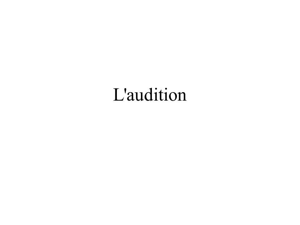 Stimulus sonore Un stimulus sonore est produit par les variations perceptibles de la pression du milieu résultant du déplacement des molécules, en général de lair, sous leffet de différents processus.