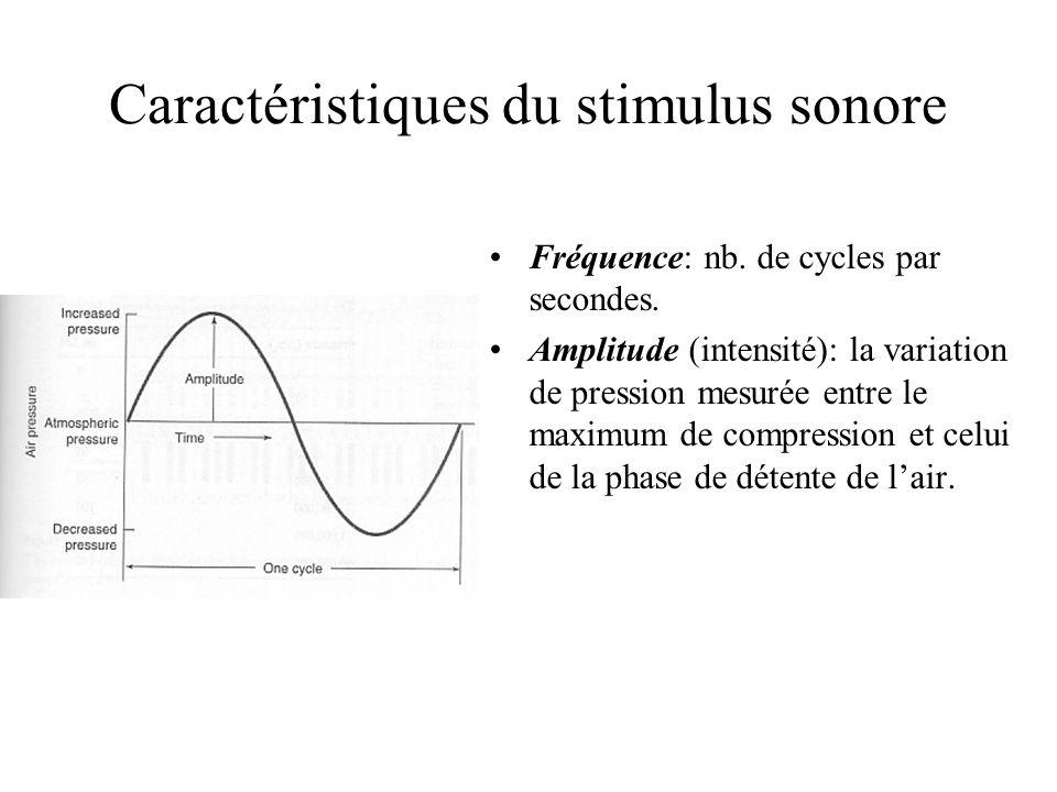 Caractéristiques du stimulus sonore Fréquence: nb. de cycles par secondes. Amplitude (intensité): la variation de pression mesurée entre le maximum de