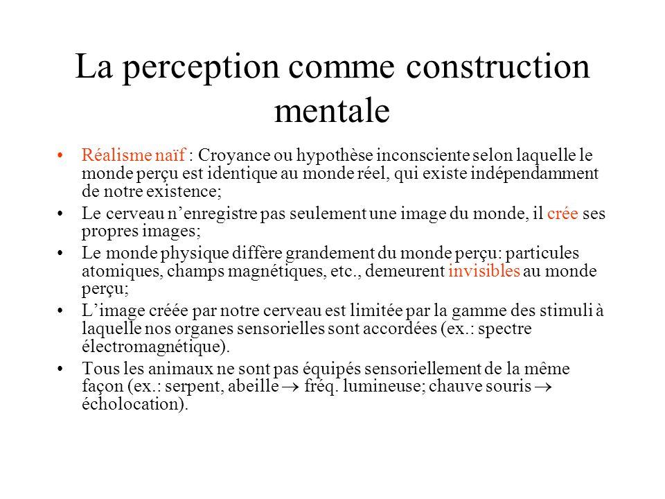La perception comme construction mentale Réalisme naïf : Croyance ou hypothèse inconsciente selon laquelle le monde perçu est identique au monde réel,
