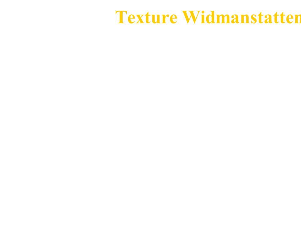 Texture Widmanstatten