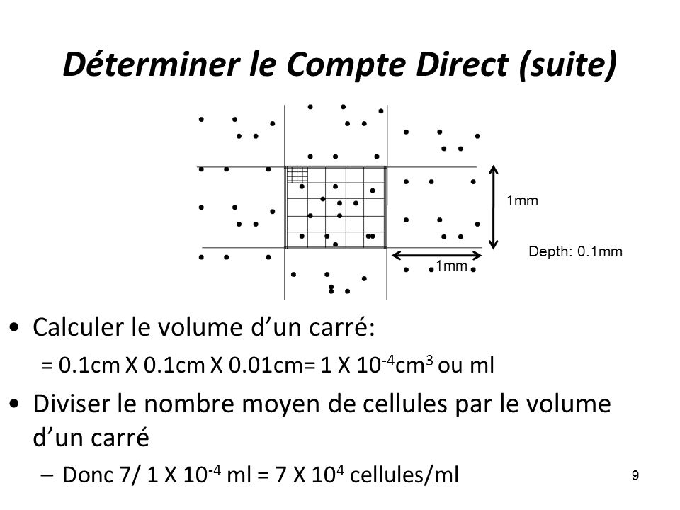 Déterminer le Compte Direct (suite) 9 Calculer le volume dun carré: = 0.1cm X 0.1cm X 0.01cm= 1 X 10 -4 cm 3 ou ml Diviser le nombre moyen de cellules par le volume dun carré –Donc 7/ 1 X 10 -4 ml = 7 X 10 4 cellules/ml 1mm Depth: 0.1mm