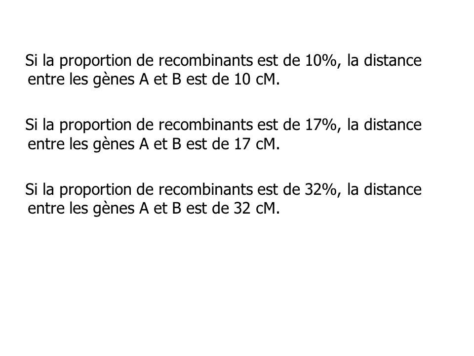 Si la proportion de recombinants est de 10%, la distance entre les gènes A et B est de 10 cM. Si la proportion de recombinants est de 17%, la distance