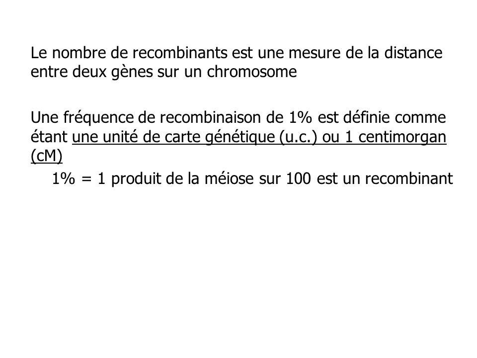 Le nombre de recombinants est une mesure de la distance entre deux gènes sur un chromosome Une fréquence de recombinaison de 1% est définie comme étan