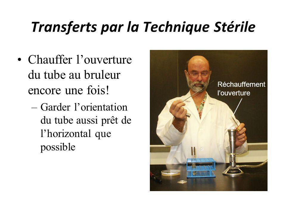 Transferts par la Technique Stérile Chauffer louverture du tube au bruleur encore une fois! –Garder lorientation du tube aussi prêt de lhorizontal que