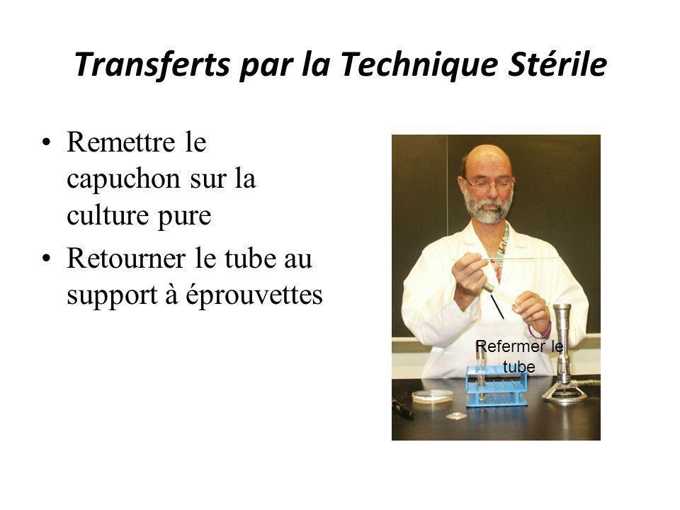 Transferts par la Technique Stérile Remettre le capuchon sur la culture pure Retourner le tube au support à éprouvettes Refermer le tube