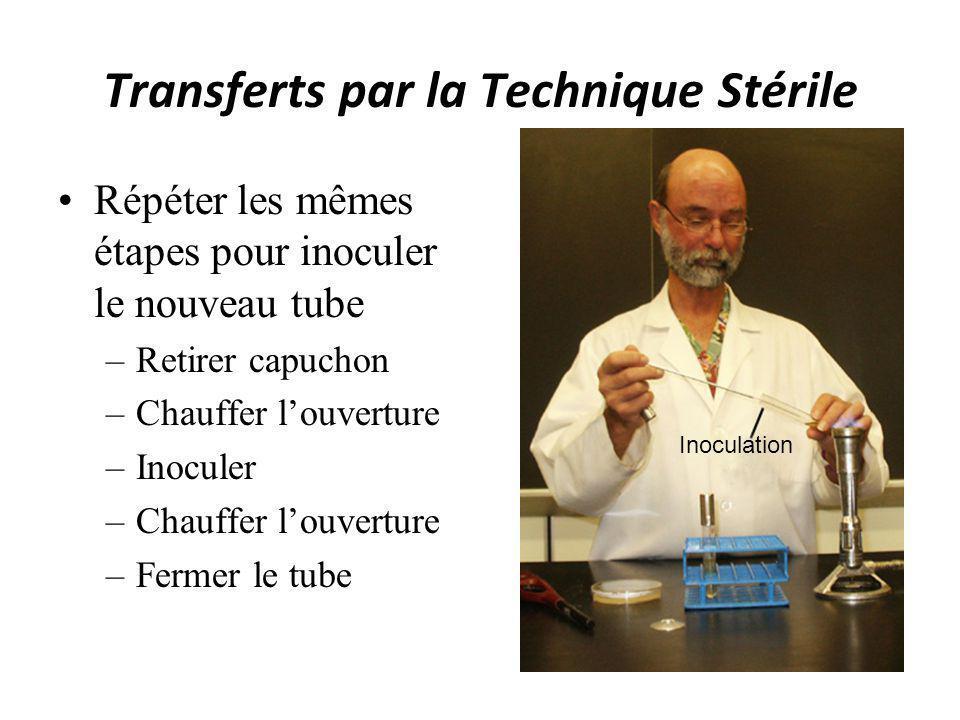Transferts par la Technique Stérile Répéter les mêmes étapes pour inoculer le nouveau tube –Retirer capuchon –Chauffer louverture –Inoculer –Chauffer
