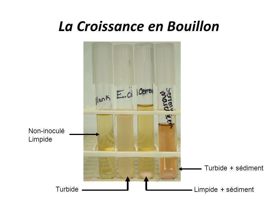 La Croissance en Bouillon Non-inoculé Limpide Turbide + sédiment Limpide + sédiment Turbide