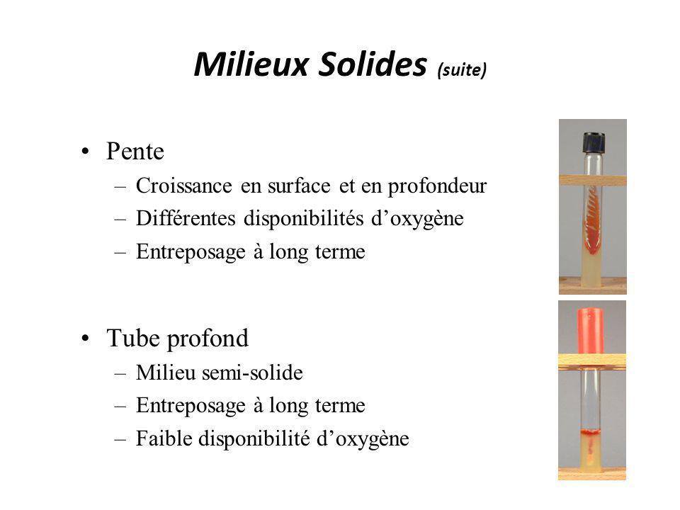 Milieux Solides (suite) Pente –Croissance en surface et en profondeur –Différentes disponibilités doxygène –Entreposage à long terme Tube profond –Mil