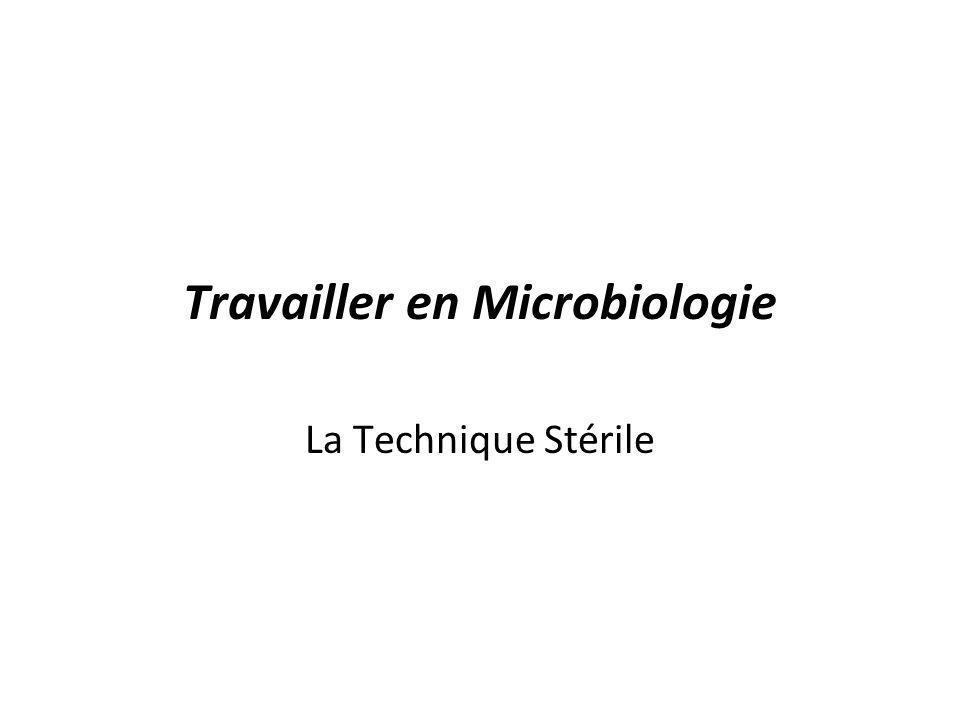Le Matériel Le matériel utilisé pour la culture et la manipulation de microorganismes doit être stérile et maintenu stérile –Milieu de culture –Éprouvettes –Assiettes de Pétris –Boucle densemencement –Etc.