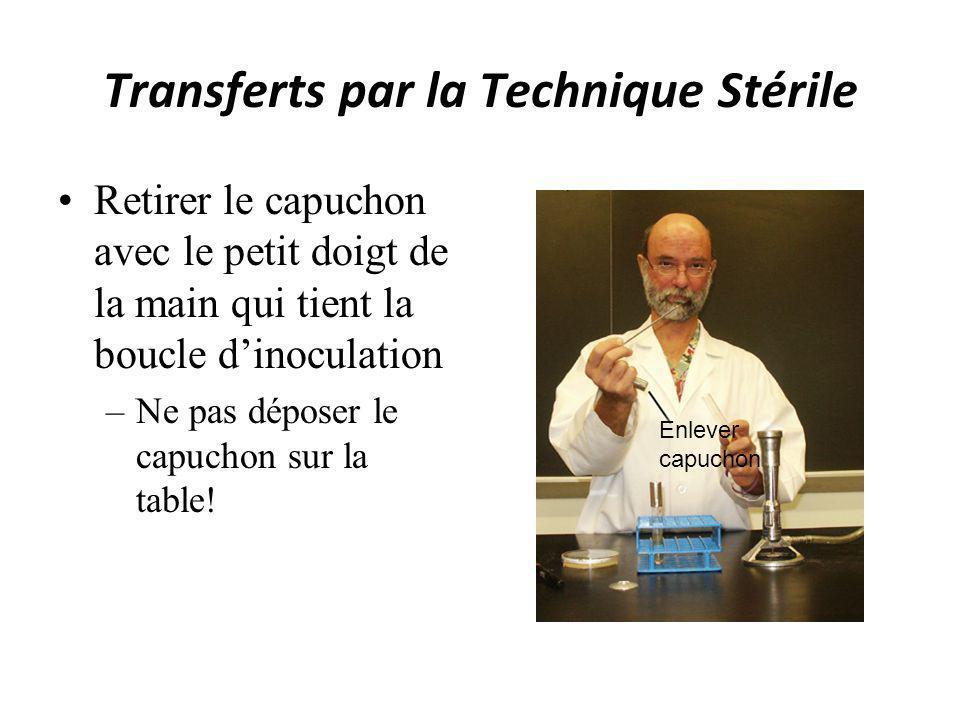 Transferts par la Technique Stérile Retirer le capuchon avec le petit doigt de la main qui tient la boucle dinoculation –Ne pas déposer le capuchon su