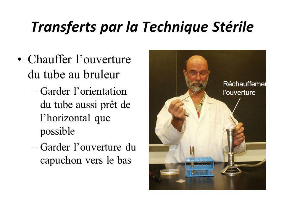 Transferts par la Technique Stérile Utiliser la boucle stérile pour retirer linoculum –Liquide de bouillons –Solide de géloses –Solide de pentes Retirer linoculum