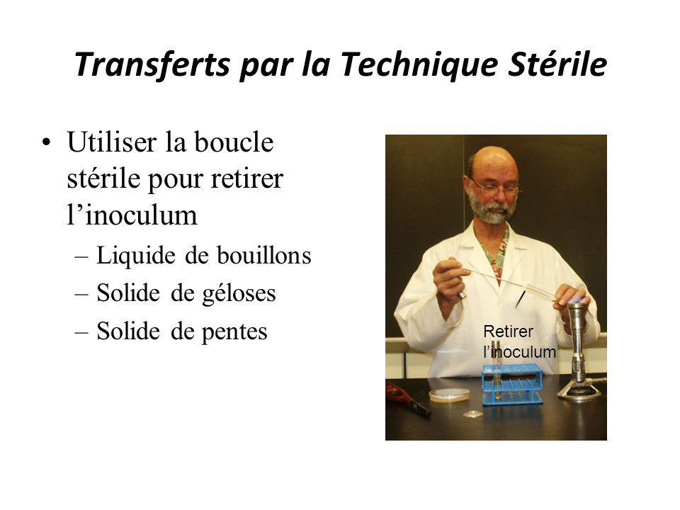 Transferts par la Technique Stérile Utiliser la boucle stérile pour retirer linoculum –Liquide de bouillons –Solide de géloses –Solide de pentes Retir