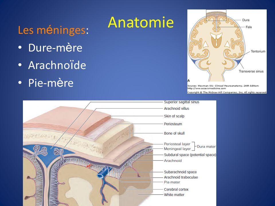 Hématomes Crâniens E pidural (HED) Sous-dural (HSD) Sous-arachno ï dien (HSA) Contusions c é r é brales – une lésion axonale diffuse
