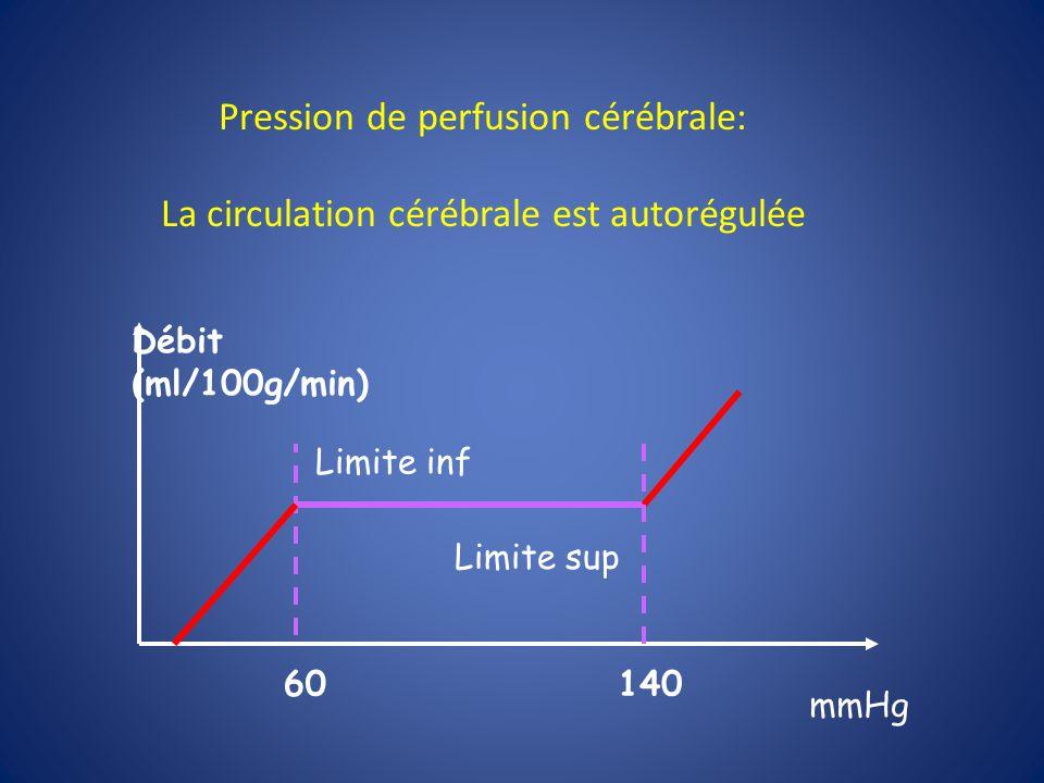 Circulation Autoregulation pCO2