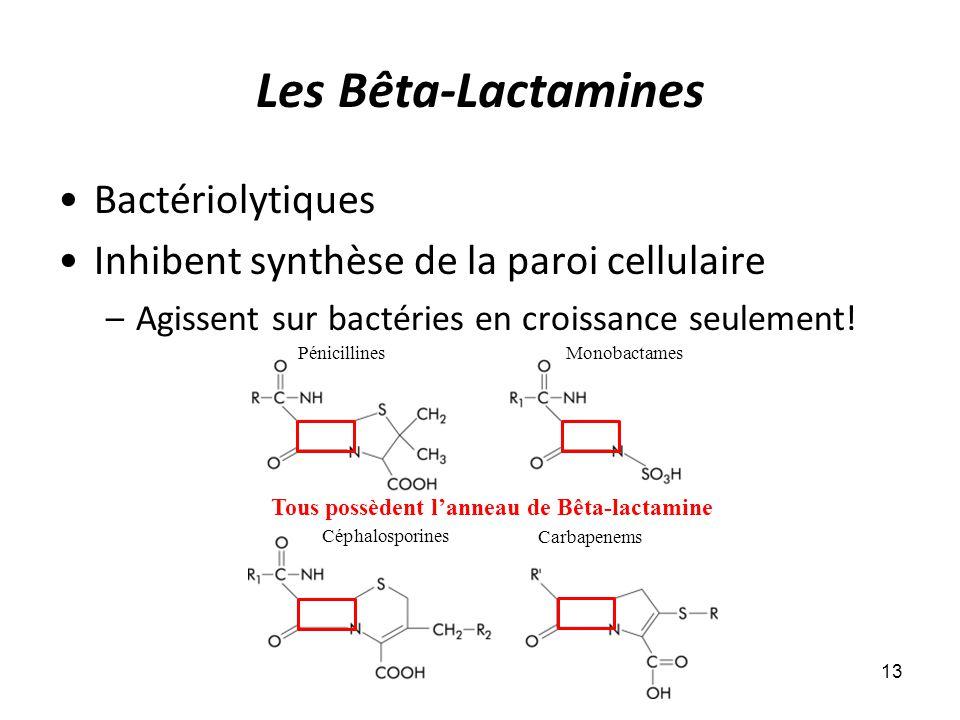 Les Bêta-Lactamines Bactériolytiques Inhibent synthèse de la paroi cellulaire –Agissent sur bactéries en croissance seulement! 13 Pénicillines Céphalo