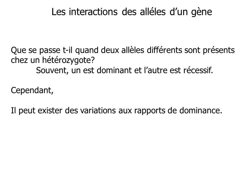 Génotypes AnémieForme des cellules Charge des molécules d hémoglobine Hb A nonnormaletype A Hb S ouifaucilletype S Hb A Hb S nonFaucille seulement à basse[O 2 ] type S + type A Dominance Dominance Codominance de HbA incomplète de HbA Le type de dominance est déterminé par les fonctions moléculaires des allèles dun gène et par le niveau danalyse.