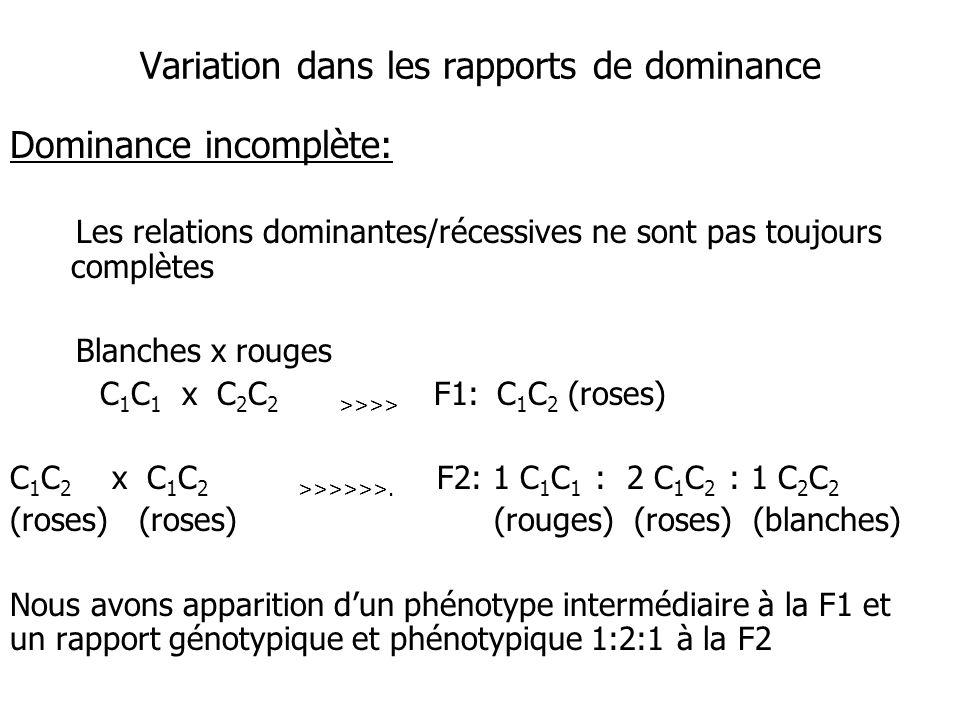 Variation dans les rapports de dominance Dominance incomplète: Les relations dominantes/récessives ne sont pas toujours complètes Blanches x rouges C