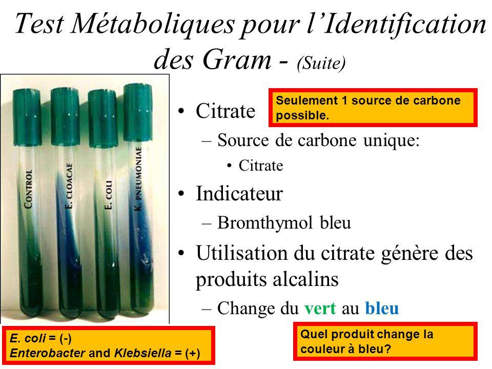 Test Métaboliques pour lIdentification des Gram - (Suite) Citrate –Source de carbone unique: Citrate Indicateur –Bromthymol bleu Utilisation du citrat