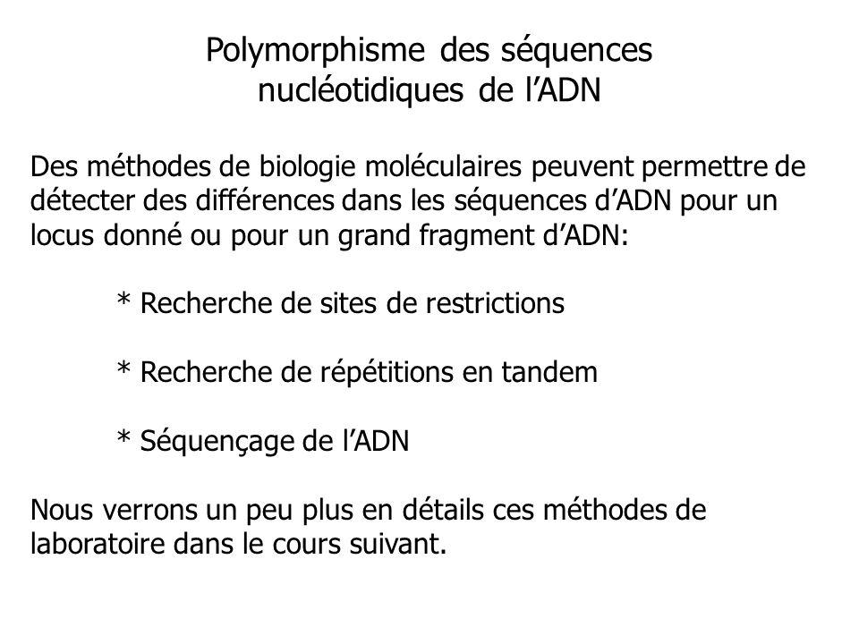 Polymorphisme des séquences nucléotidiques de lADN Des méthodes de biologie moléculaires peuvent permettre de détecter des différences dans les séquen