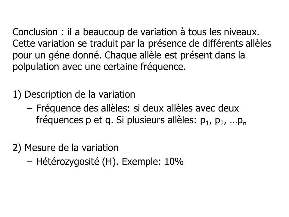 Conclusion : il a beaucoup de variation à tous les niveaux. Cette variation se traduit par la présence de différents allèles pour un géne donné. Chaqu