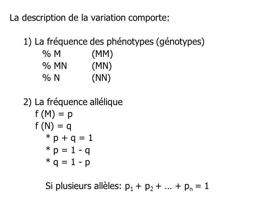 La description de la variation comporte: 1) La fréquence des phénotypes (génotypes) % M(MM) % MN (MN) % N(NN) 2) La fréquence allélique f (M) = p f (N