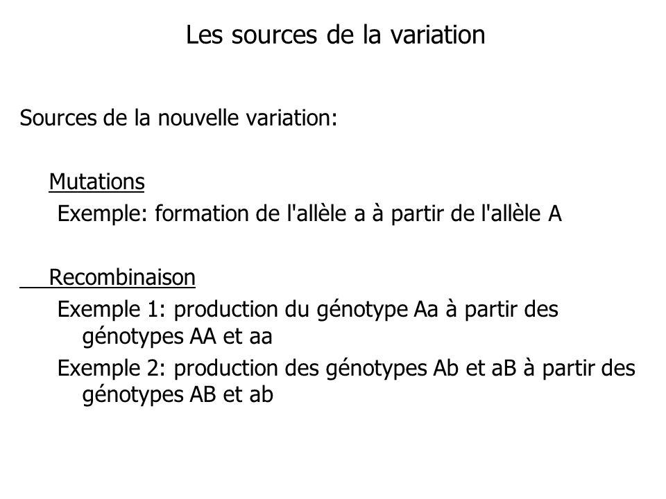 Les sources de la variation Sources de la nouvelle variation: Mutations Exemple: formation de l'allèle a à partir de l'allèle A Recombinaison Exemple