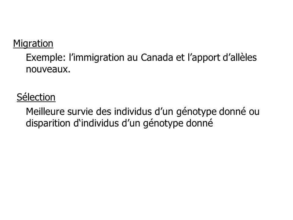 Migration Exemple: limmigration au Canada et lapport dallèles nouveaux. Sélection Meilleure survie des individus dun génotype donné ou disparition din