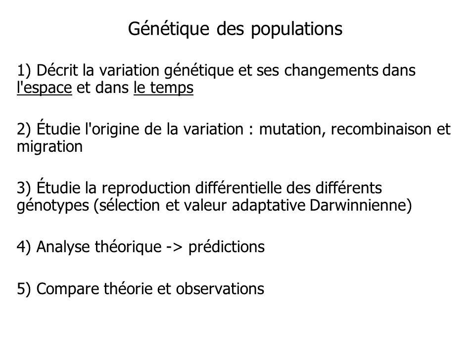 Génétique des populations 1) Décrit la variation génétique et ses changements dans l'espace et dans le temps 2) Étudie l'origine de la variation : mut