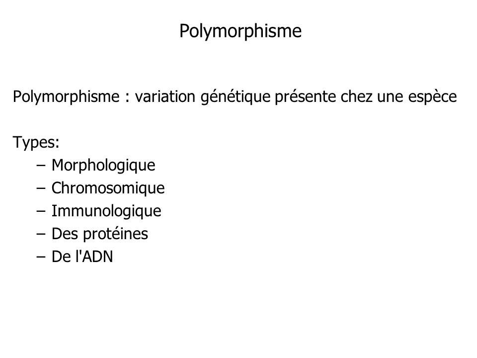 Polymorphisme Polymorphisme : variation génétique présente chez une espèce Types: –Morphologique –Chromosomique –Immunologique –Des protéines –De l'AD