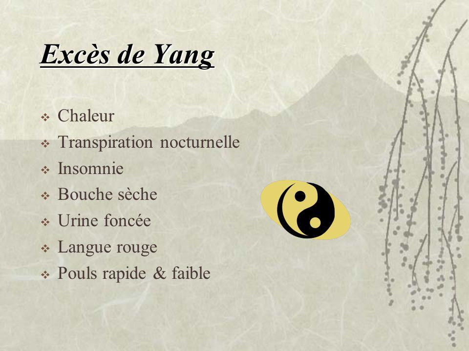 Excès de Yang Chaleur Transpiration nocturnelle Insomnie Bouche sèche Urine foncée Langue rouge Pouls rapide & faible