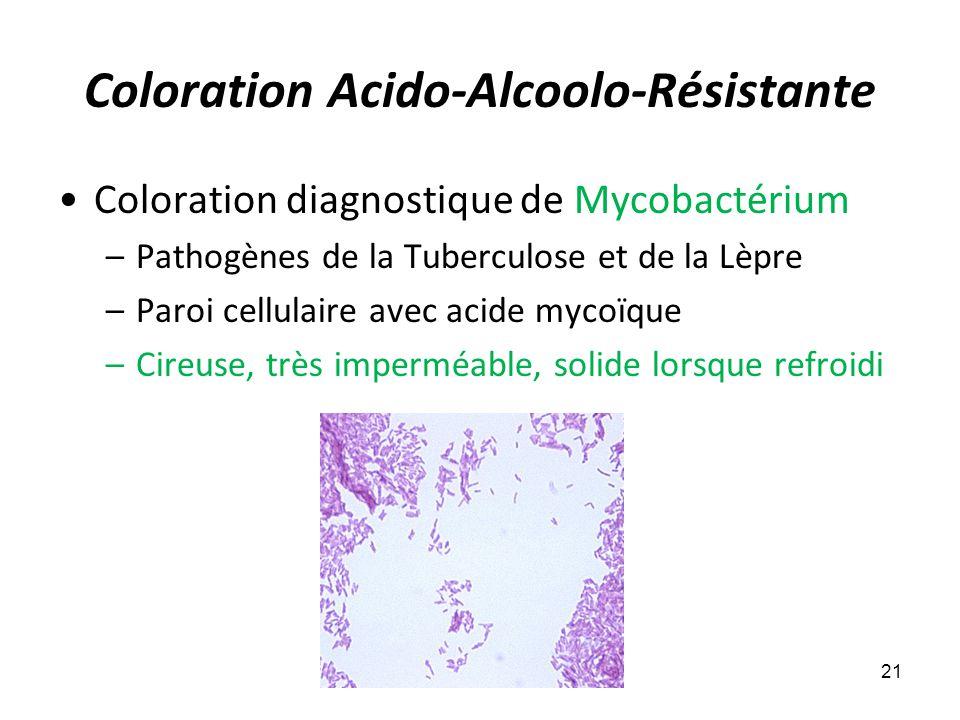 Coloration Acido-Alcoolo-Résistante Coloration diagnostique de Mycobactérium –Pathogènes de la Tuberculose et de la Lèpre –Paroi cellulaire avec acide mycoïque –Cireuse, très imperméable, solide lorsque refroidi 21
