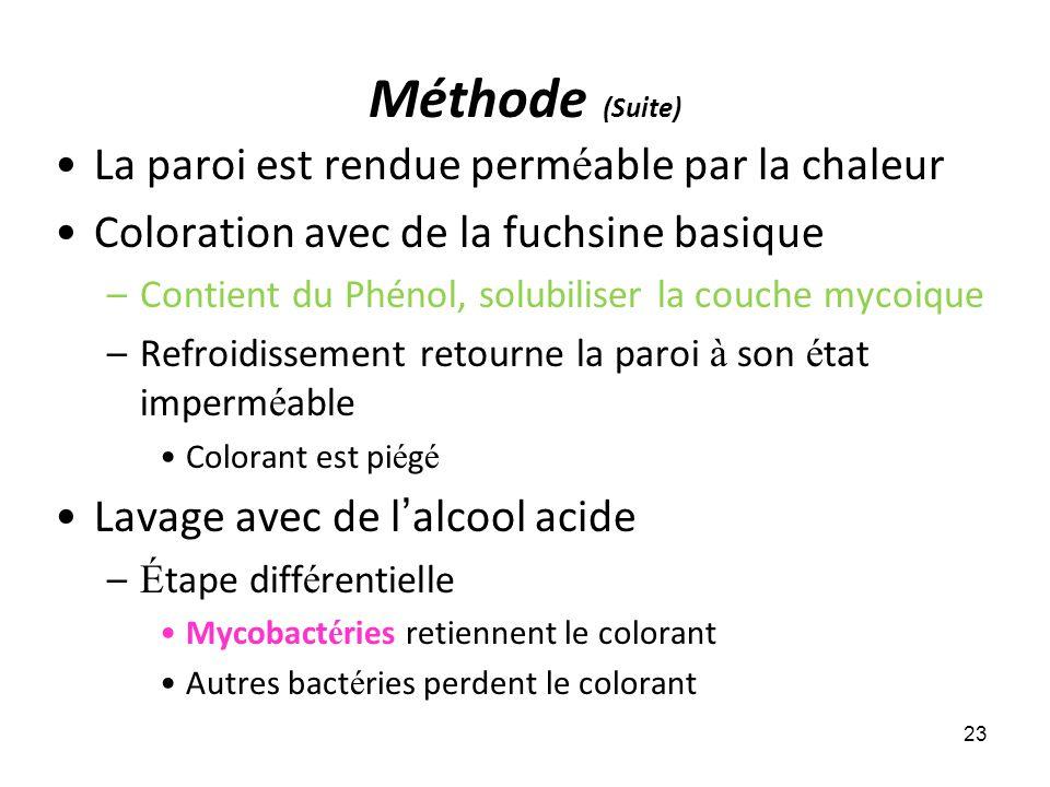 Méthode (Suite) La paroi est rendue perm é able par la chaleur Coloration avec de la fuchsine basique –Contient du Phénol, solubiliser la couche mycoi