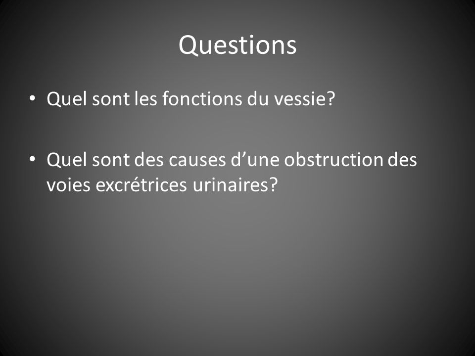 Questions Quel sont les fonctions du vessie.