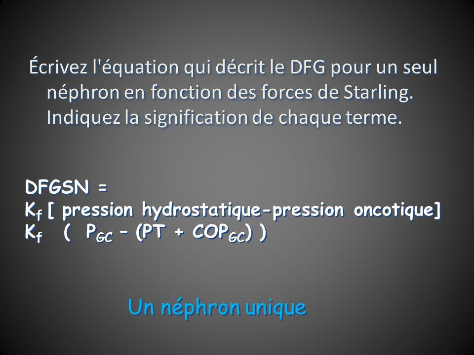 Écrivez l équation qui décrit le DFG pour un seul néphron en fonction des forces de Starling.