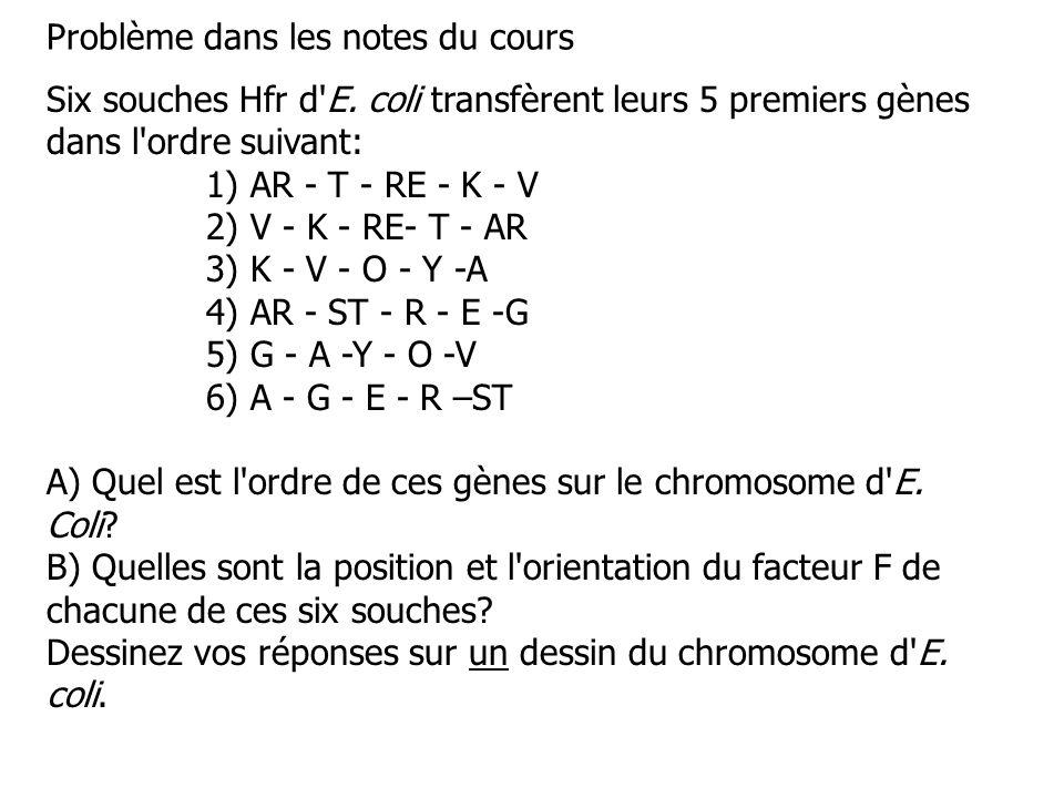 Six souches Hfr d'E. coli transfèrent leurs 5 premiers gènes dans l'ordre suivant: 1) AR - T - RE - K - V 2) V - K - RE- T - AR 3) K - V - O - Y -A 4)