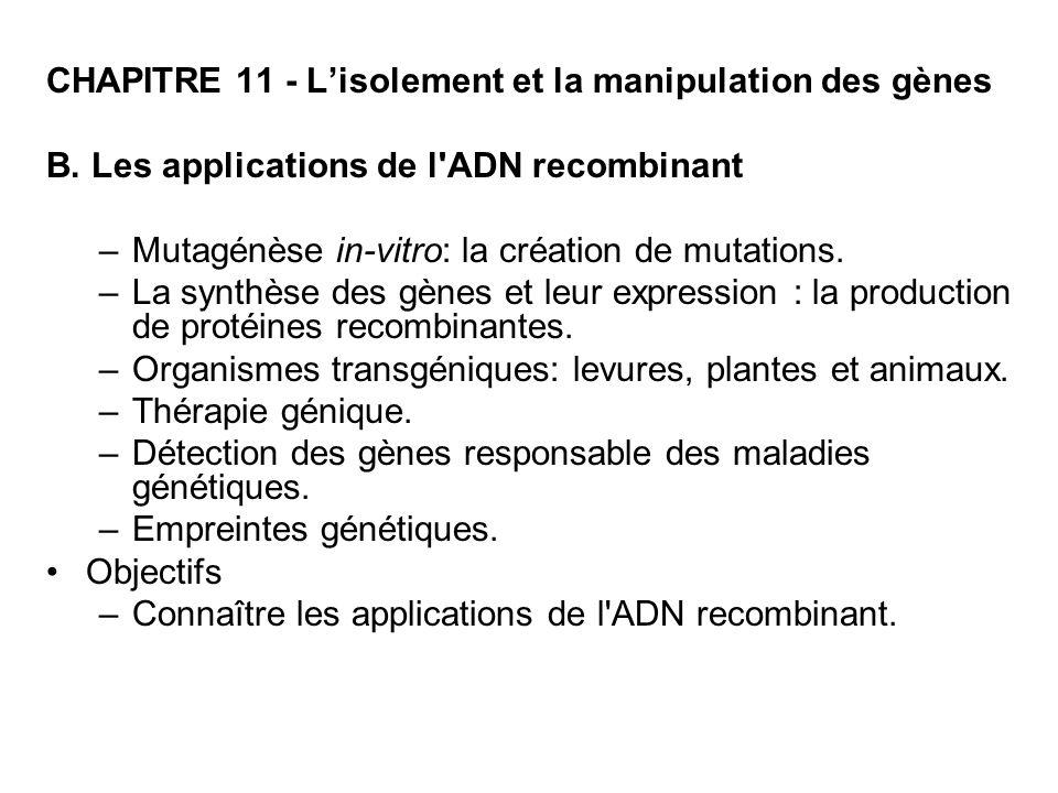 CHAPITRE 11 - Lisolement et la manipulation des gènes B. Les applications de l'ADN recombinant –Mutagénèse in-vitro: la création de mutations. –La syn