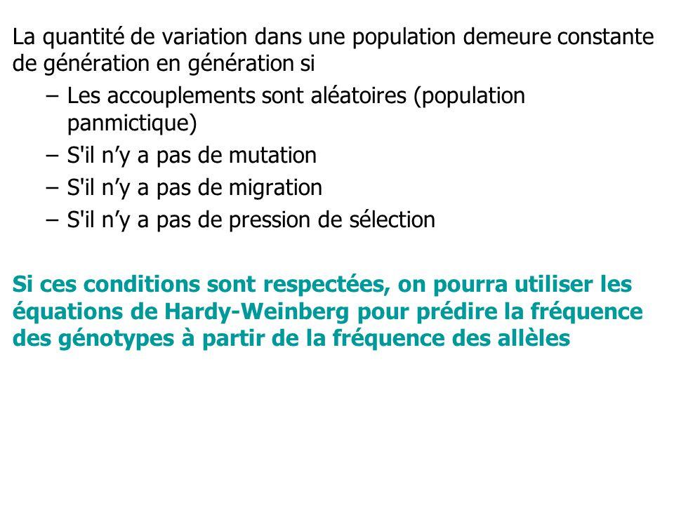 La quantité de variation dans une population demeure constante de génération en génération si –Les accouplements sont aléatoires (population panmictique) –S il ny a pas de mutation –S il ny a pas de migration –S il ny a pas de pression de sélection Si ces conditions sont respectées, on pourra utiliser les équations de Hardy-Weinberg pour prédire la fréquence des génotypes à partir de la fréquence des allèles