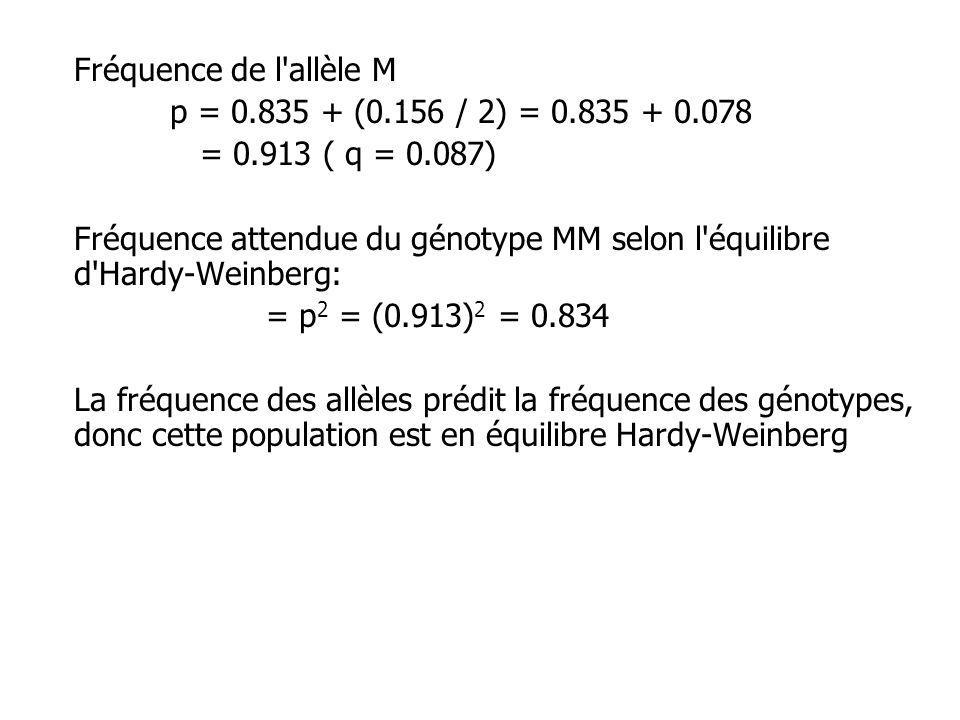 Fréquence de l allèle M p = 0.835 + (0.156 / 2) = 0.835 + 0.078 = 0.913 ( q = 0.087) Fréquence attendue du génotype MM selon l équilibre d Hardy-Weinberg: = p 2 = (0.913) 2 = 0.834 La fréquence des allèles prédit la fréquence des génotypes, donc cette population est en équilibre Hardy-Weinberg