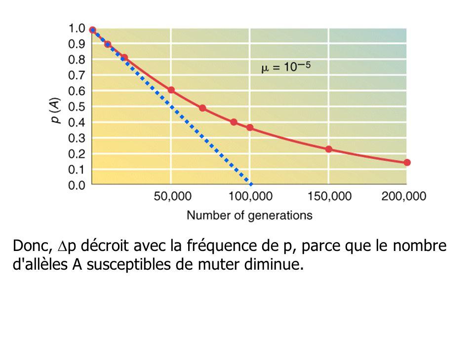 Après n générations, Comme µ est petit, une approximation conduit à: p n = p o e -nµ si n= 10 000 et µ = 10 -5 –p n = p o e -(10 000)(0.00001) –p n = p o e -0.1 –p n = 0.904 p o Donc, si p 0 = 1, p 10000 = 0.904 Le taux de modification des fréquences des gènes par mutation est très faible.